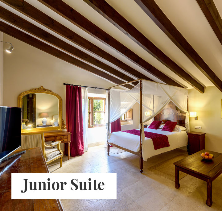 junior suite hotel son grec